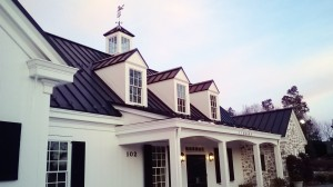 black roof house