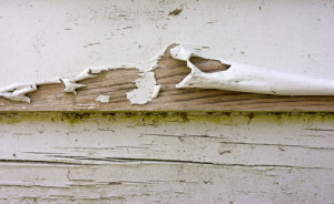 home_siding_peeling