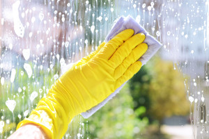 fall window cleaning