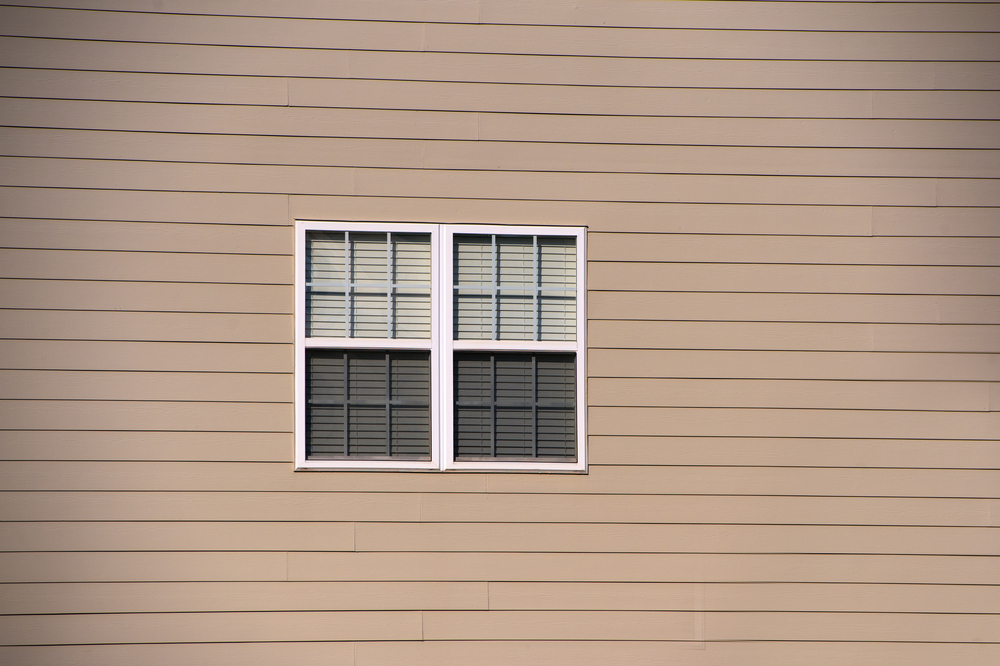 vinyl siding and a window